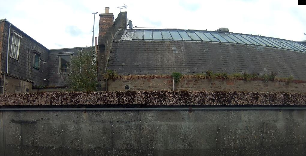 The Hanging Gardens of Inverness